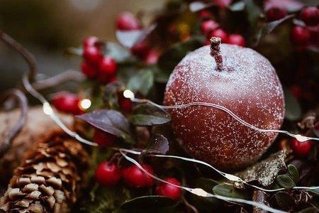 【ドイツのクリスマス】は26日まで?誰と過ごす?何をする?