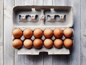 ドイツのたまごパックから学ぶ、卵の事情【ベジタリアン・ビーガン】